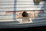 Reparatie afgebroken scepterpot in Makkum